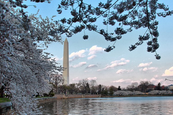 Call for Papers: 2018 Annual Meeting in Washington, DC